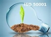 Applying the energy management system following ISO 50001:2011